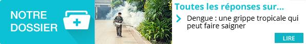 https://www.pourquoidocteur.fr/MaladiesPkoidoc/1171-Dengue-grippe-tropicale-faire-saigner
