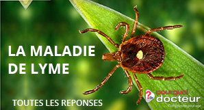 Attention aux tiques : il n'y a pas que la maladie de Lyme, les cas ...