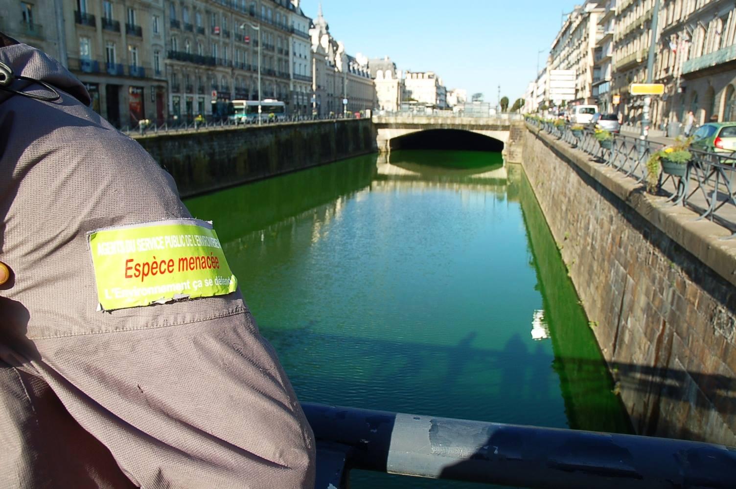 Pollution : douze rivières colorées en vert fluo pour alerter