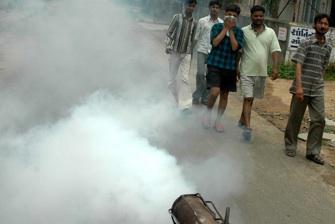 Chikungunya : pulvérisation controversée du malathion