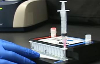 Ebola : un test de diagnostic rapide autorisé par les Etats-Unis