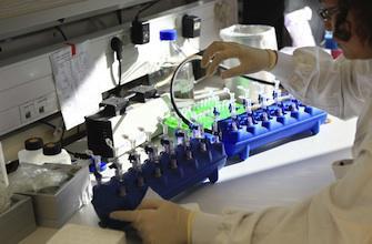 La recherche sur les cellules souches en liberté surveillée