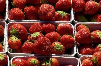 9 fraises sur 10 contiennent des pesticides