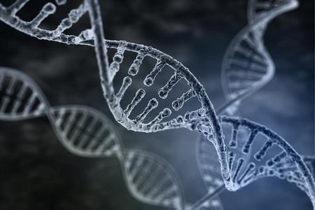 Mélanome : une protéine pourrait permettre de contrôler la tumeur