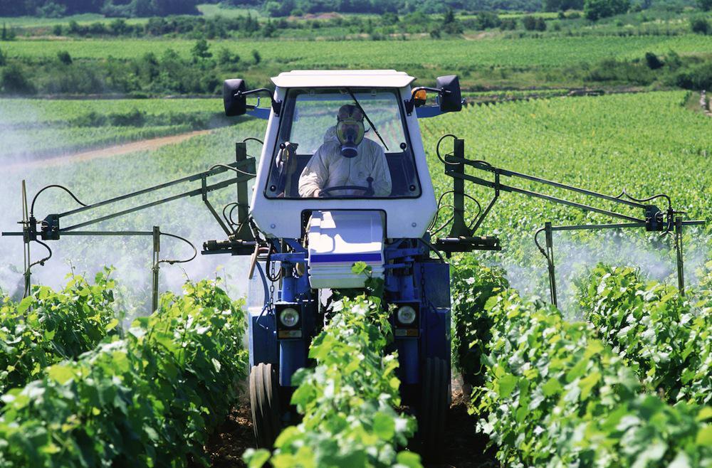 Agriculteurs : les types de cancers varient en fonction des cultures