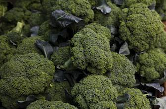 Les brocolis protègeraient de l'arthrose