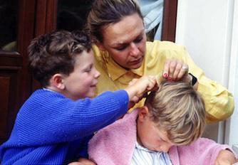 Poux : les produits vétérinaires contre-indiqués chez l'enfant