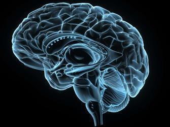 Une maladie rare permet de mieux comprendre l'Alzheimer