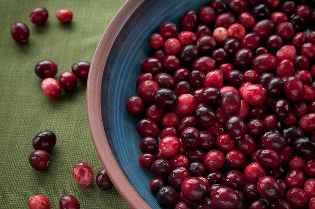 La cranberryfavorise l'équilibre du microbiote intestinal