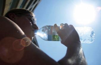 Les carences en vitamine D suspectées d'augmenter l'asthme