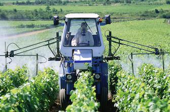 Pesticides : l'exposition au DDT augmenterait le risque d'Alzheimer