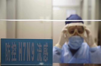 H7N9 : des scientifiques vont créer des virus mutants adaptés à l'Homme