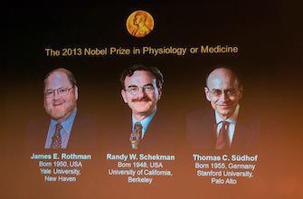 Nobel de médecine : un prix pour la découverte du transport des molécules