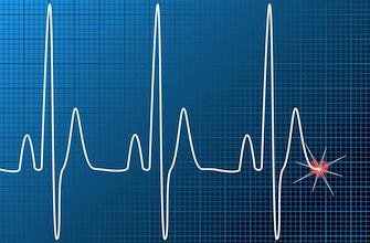 Le battement du cœur rythmé grâce à six protéines