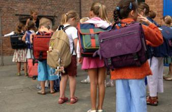 Rentrée scolaire : la chasse au poux est ouverte