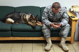 Stress post-traumatique : un numéro pour libérer la parole des soldats