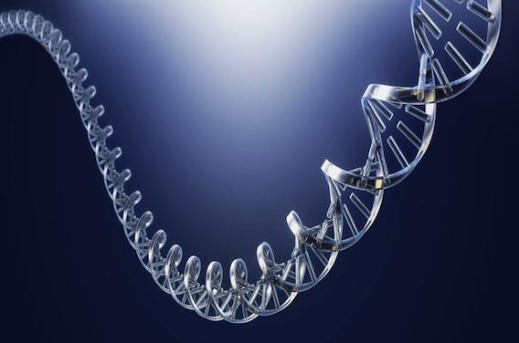 Toulouse : un chercheur invente un séquençage de l'ADN ultra-rapide