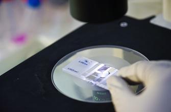 Traitements personnalisés : les promesses de la génétique