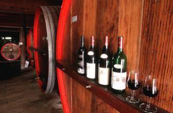 Un bar à vins pour les patients en fin de vie du CHU de Clermont-Ferrand
