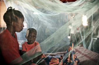 Paludisme : un vaccin qui bloque le parasite dans la cellule