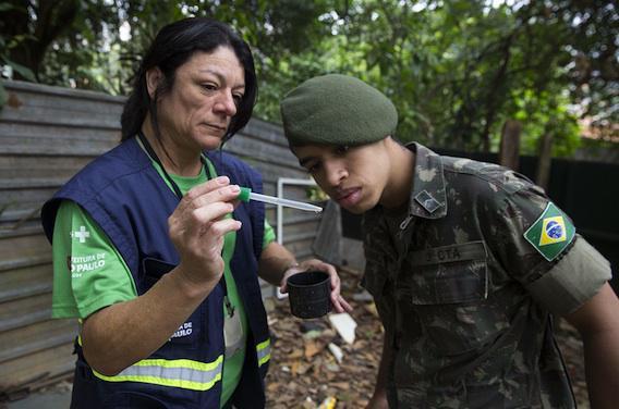 Zika : le Brésil déclare la guerre au virus