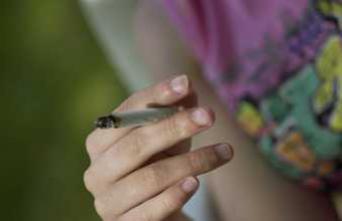 Cannabis : 2 députés dénoncent l'échec des politiques