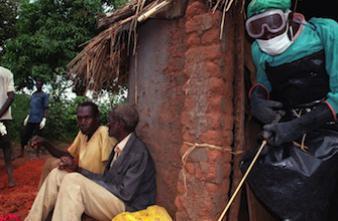Ebola : les chercheurs ont établi la chaîne de transmission du virus
