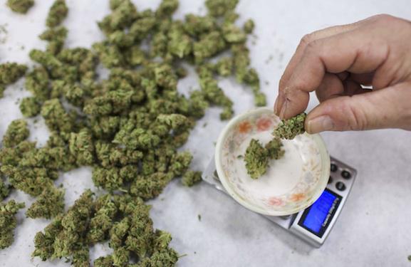 Légaliser le cannabis médical n'augmente pas la consommation chez les jeunes