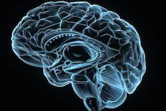 Alzheimer : l'origine de la maladie recréée en laboratoire