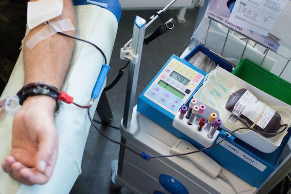 Le don de sang ouvert aux homosexuels sous conditions