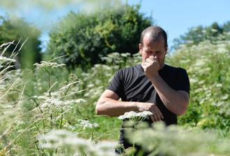 Allergies aux pollens : 63 départements en alerte rouge la semaine prochaine