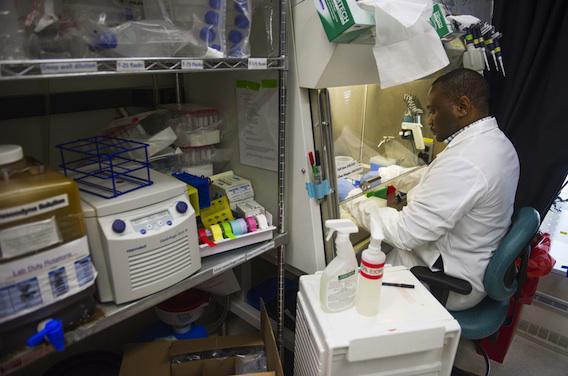 Ebola : quand les vieilles molécules ressortent du placard