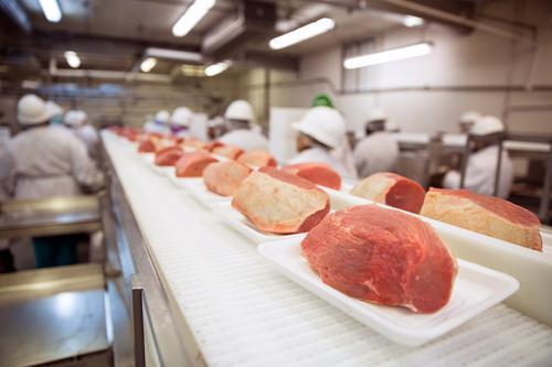Salmonelle : un bactériophage l'élimine de la viande