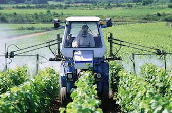 Pesticides : une étude alarmante sur leur toxicité