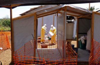 Ebola : un risque de propagation internationale pour l'OMS