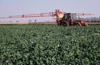 Santé : l'Europe disculpe les pesticides