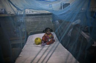 Dengue : un vaccin efficace prévu pour 2015