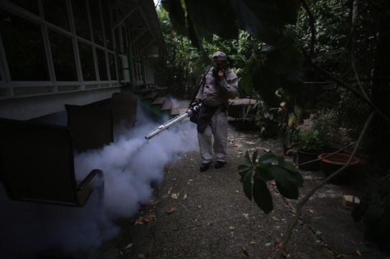 Cinq cas importés : comment la France se prépare à la menace Zika
