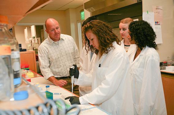 Thérapies géniques : des avancées majeures pour le cerveau