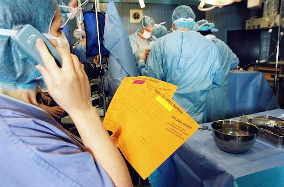 Greffes : la mortalité par cancer est accrue chez les transplantés