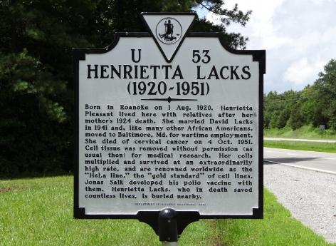 Voici l'étrange histoire d'Henrietta Lacks et de ses cellules immortelles