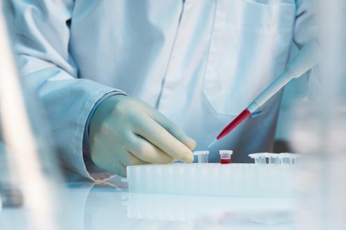 Des chercheurs recréent un intestin humain avec des cellules souches