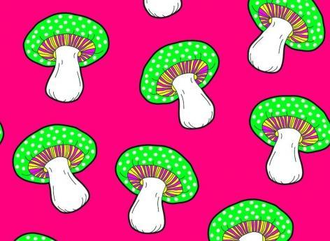Les effets hallucinatoires d'un champignon recréés avec un placebo