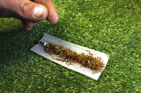 Cannabis : les jeunes fument beaucoup moins que ce que l'on croit