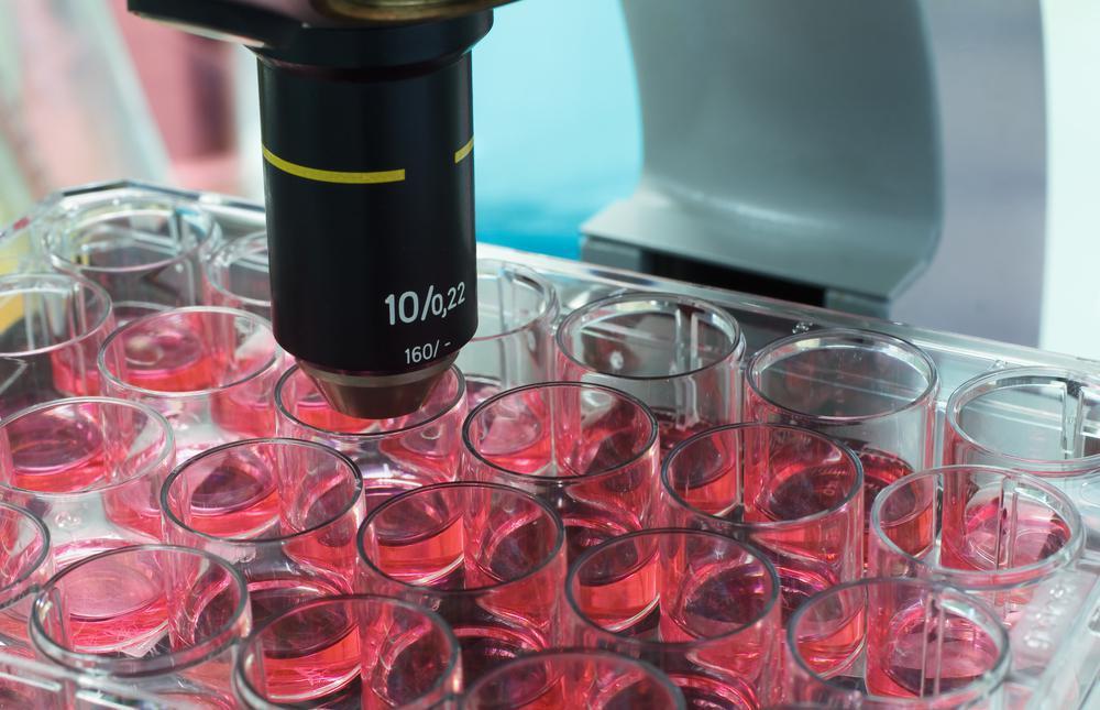 Crispr : des Chinois utilisent des embryons humains pour contrer le sida