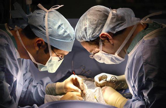 Don d'organes : premières greffes entre patients séropositifs