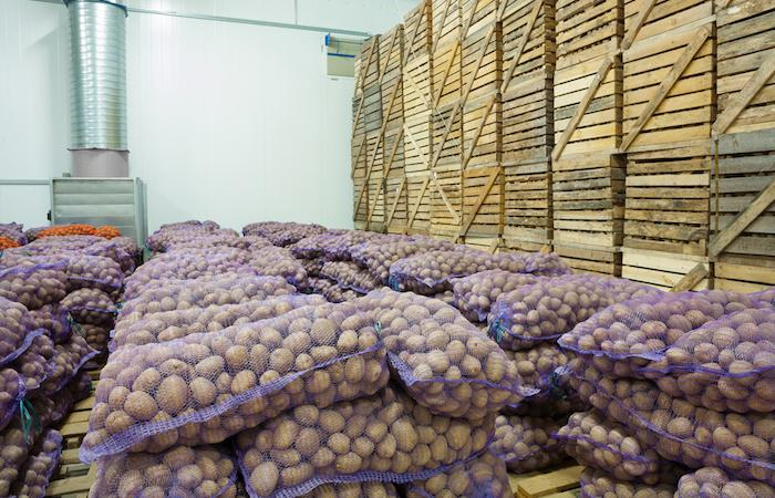 Clarebout Potatoes : l'infection inconnue touche maintenant 85 personnes