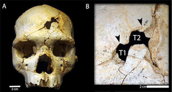 Un meurtre vieux de 430 000 ans découvert en Espagne