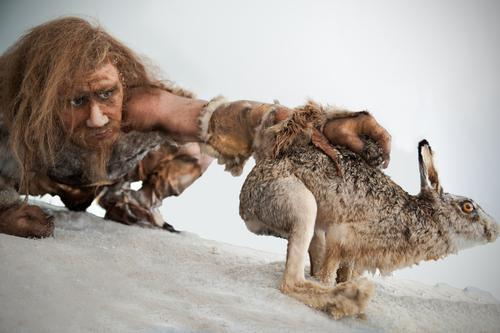 Gènes : Néandertal incompatible avec l'homme moderne