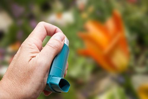 Asthme allergique : désensibiliser avec des comprimés